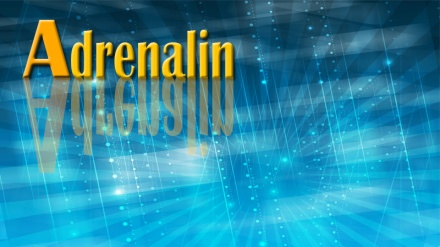 Adrenalin (05.dio)