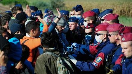 Jačanje evropske radikalne desnice u sjeni nastavka migrantske krize