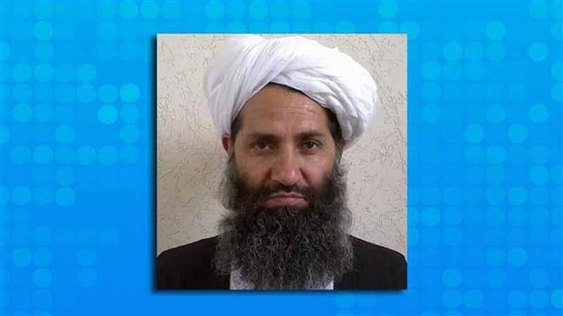 کورونا نے طالبان سرغنہ کو ٹھکانے لگایا