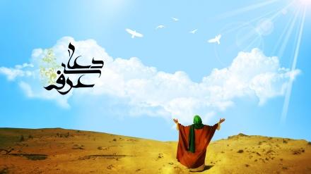 عرفہ؛ایک آشنا نام خطاکاروں کے لئے! ۔ ویڈیو