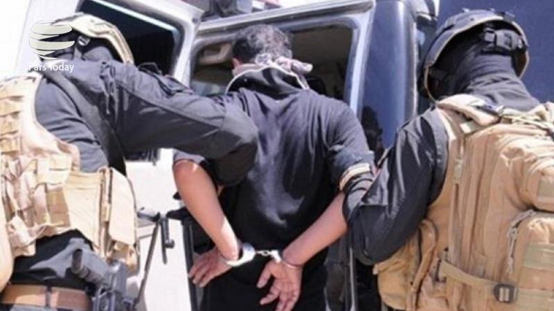 12 داعشی لە سامەڕا گیران