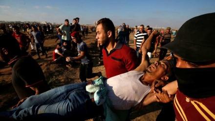 بیت المقدس اور غرب اردن میں فلسطینیوں پر صیہونیوں کے حملے، دسیوں زخمی