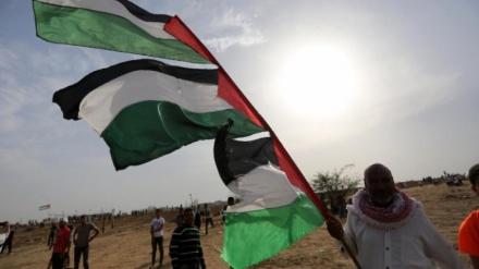 غزہ کے عالمی دن کی مناسبت سے خصوصی پروگرام
