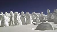 Sniježna čudovišta