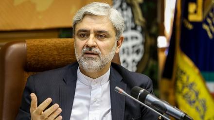 پاکستانی سلامتی کو اپنی سلامتی سمجھتے ہیں: سفیر ایران