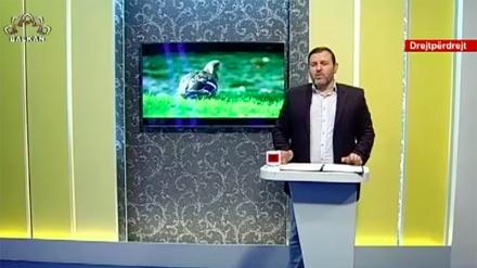 Përshëndetje Shqipëri (28.05.2020)