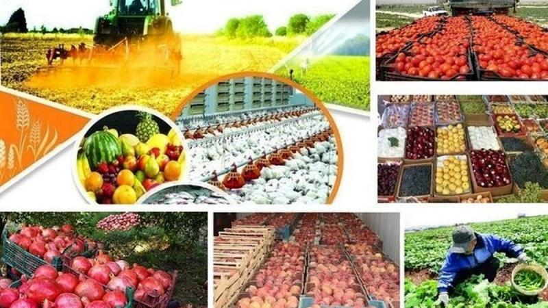 ایران کی زرعی مصنوعات کی برآمدات میں چھبیس فیصد کا اضافہ