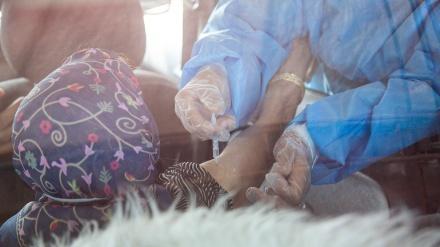 Širaz; vakcinacija protiv korone u automobilu
