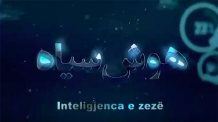 Inteligjenca e zezë II