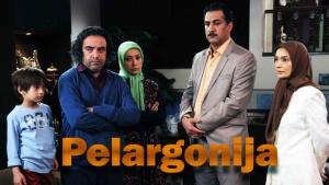 Pelargonija