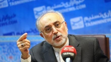 ایران کا کینسر آئیان تھراپی سنٹر بہت جلد اپنا کام شروع کردے گا: علی اکبر صالحی